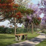 Perspectiva ilustrada da Alameda da Primavera*